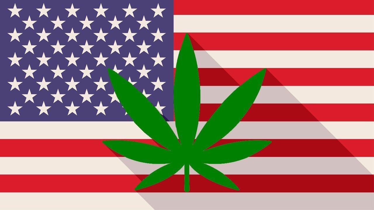 Legalize pot in america