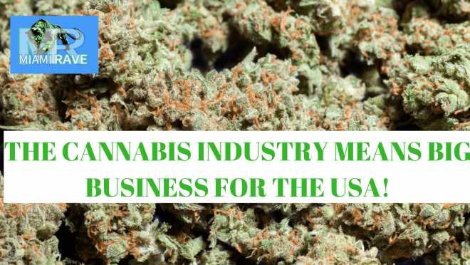 Buy Cannabis In Miami