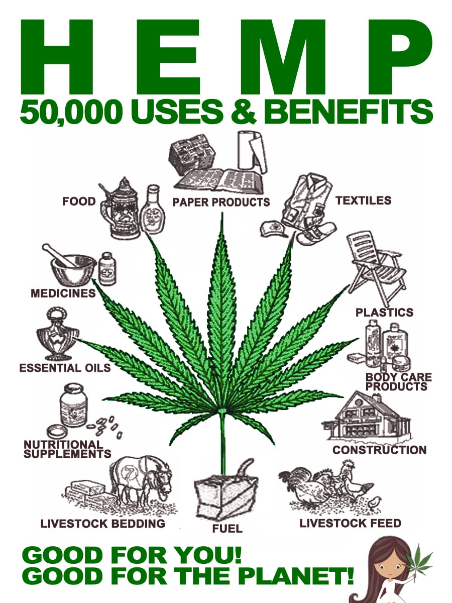 Industrial Hemp Expected To Add 2 Billion Dollars + To USA Economy!!