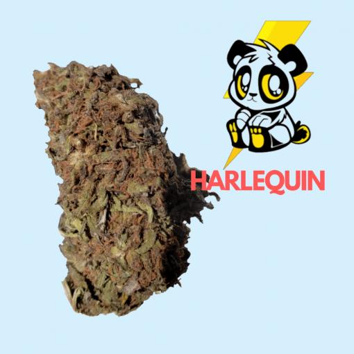 Rave Budz - Harlequin Wholesale CBD Hemp Flower
