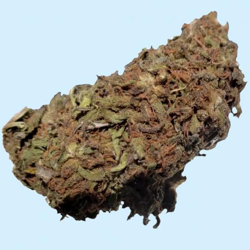 The Harlequin Strain CBD Hemp Flower