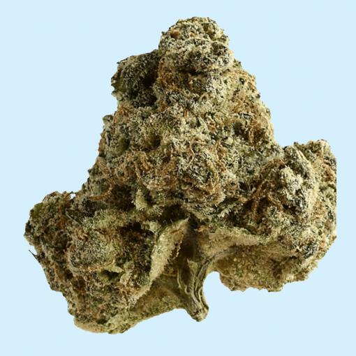 Rave Budz - Charlotte's Webb Wholesale CBD Hemp Flower