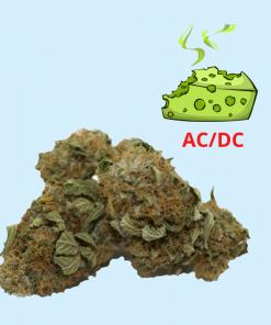 Rave Budz - AC/DC Wholesale Hemp Flower