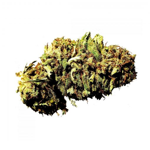 Premium Medical CBD Hemp Buds For Sale Online