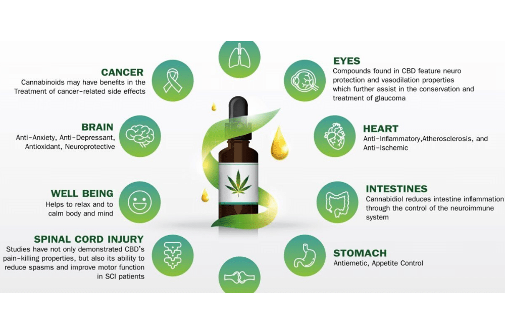 CBD Possible Health Benefits And Side Effects