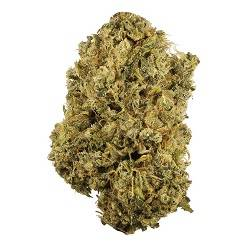 CBD Weed Wholesale Online For Sale