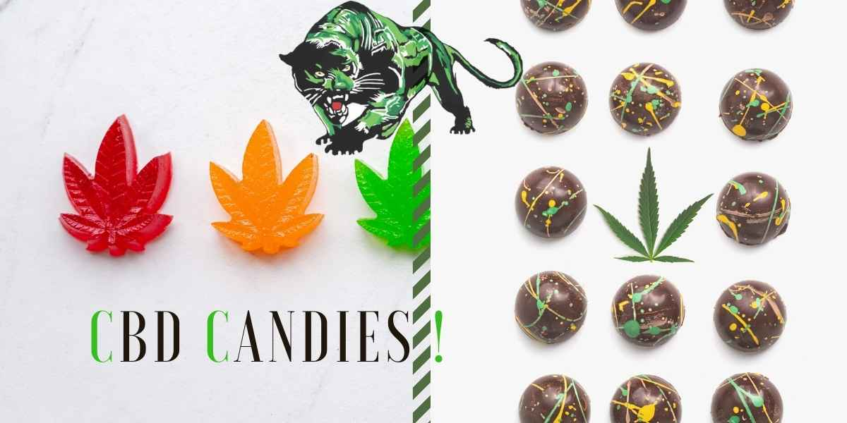 Top Reasons You Cannot Say No to CBD Candy!