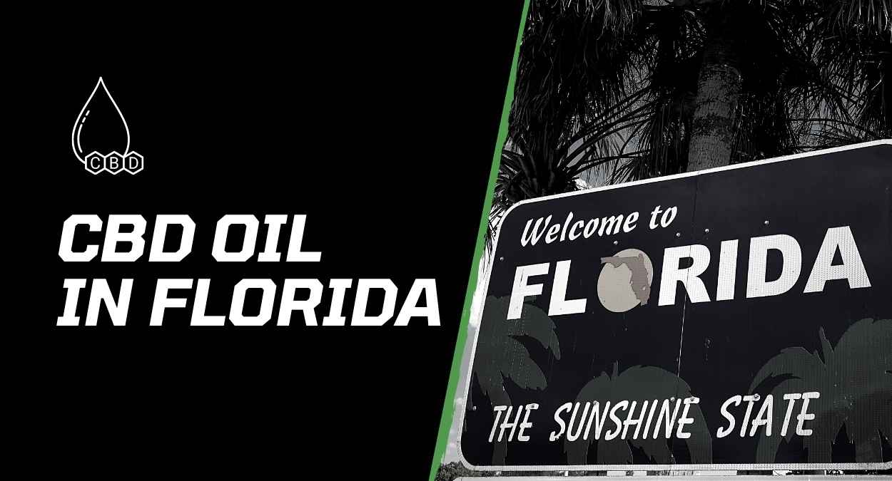 CBD Oil in Florida – All that you Need to Know in 2021