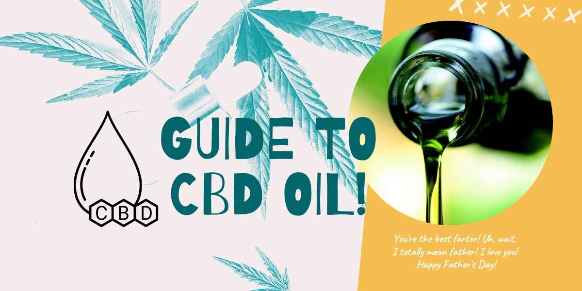 The complete and essential guide to CBD oil in 2021
