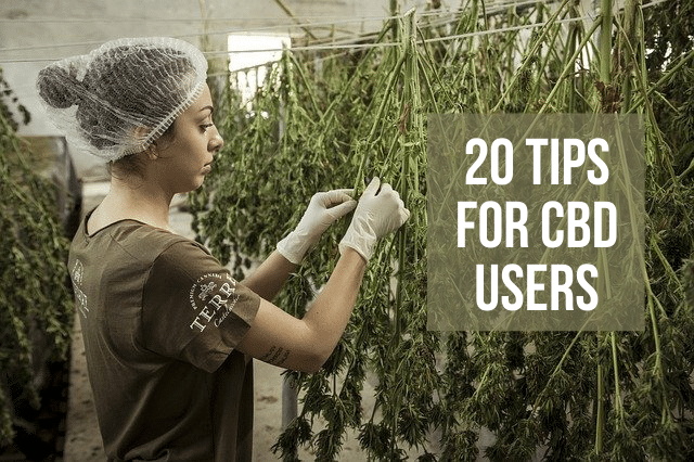 20 essential tips for CBD Users