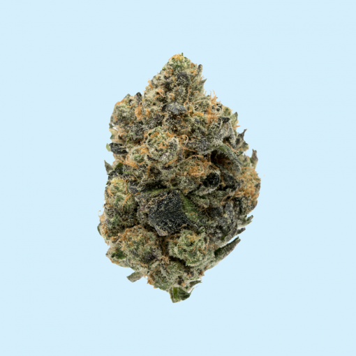 The Girl Scout Cookies Strain ( GSC) Delta 8 THC Flower