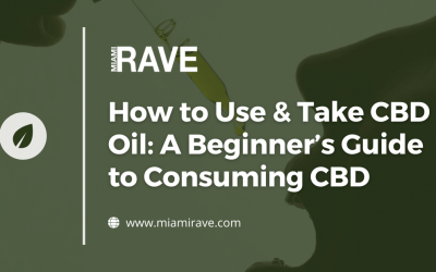 How to Use & Take CBD Oil: A Beginner's Guide to Consuming CBD
