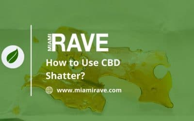 How To Use CBD Shatter?