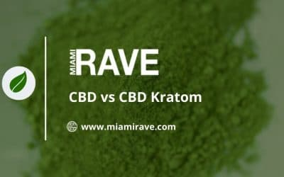 CBD vs. CBD Kratom: Which is Right For You?